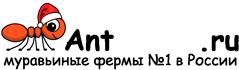 Муравьиные фермы AntFarms.ru - Новосибирск